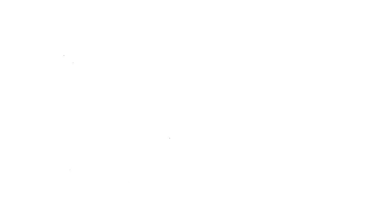 the-warrior-princess-mud-run